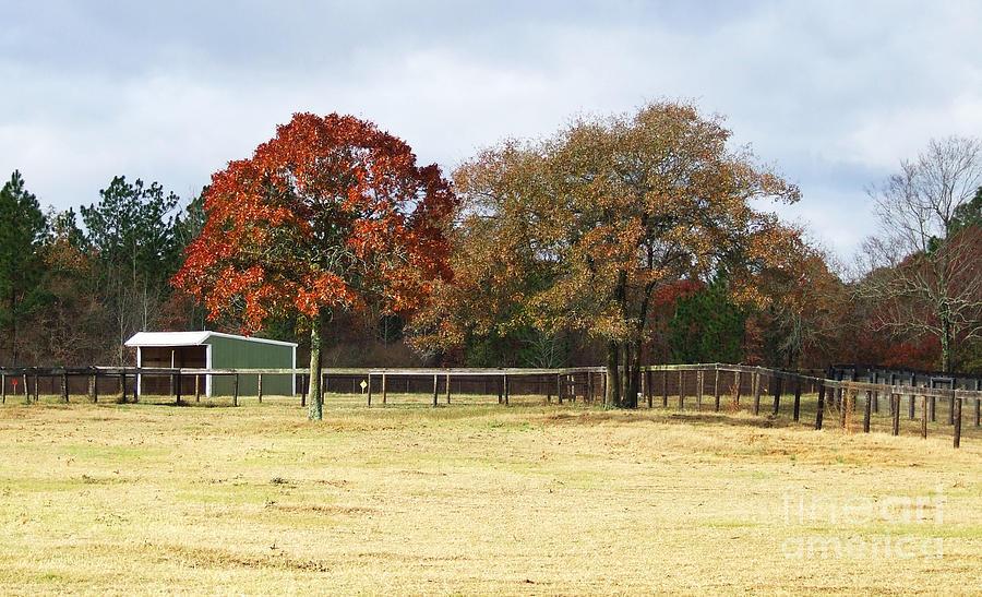 Aiken Photograph