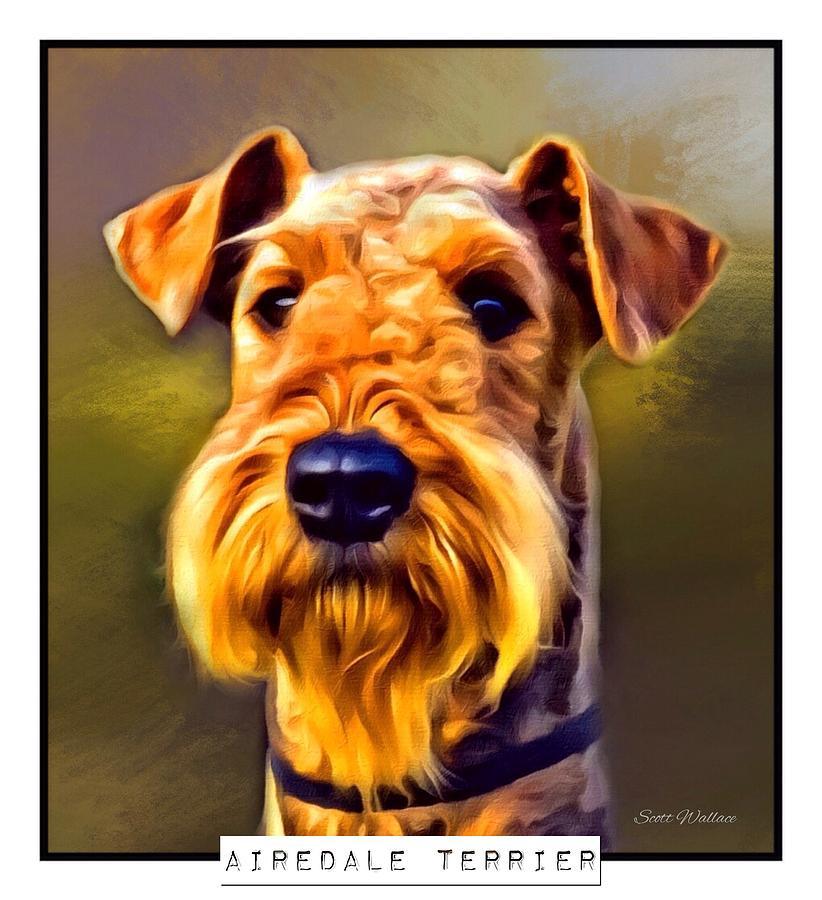 Airedale Terrier Digital Art