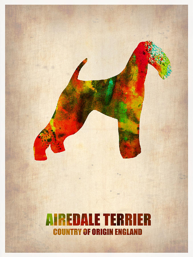 Airedale Terrier Painting - Airedale Terrier Poster by Naxart Studio
