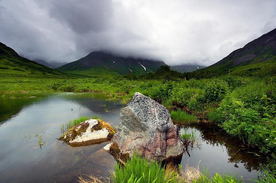 Alaska Summertime Photograph