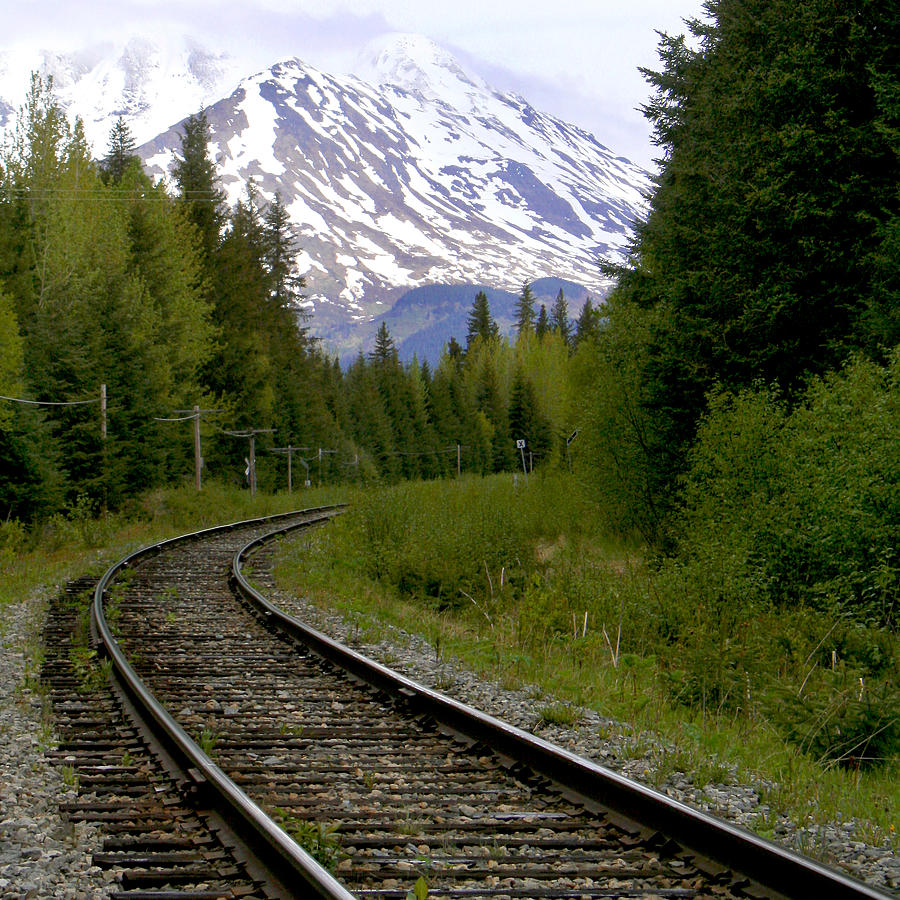 Tracks Photograph - Alaskan Tracks by Art Block Collections