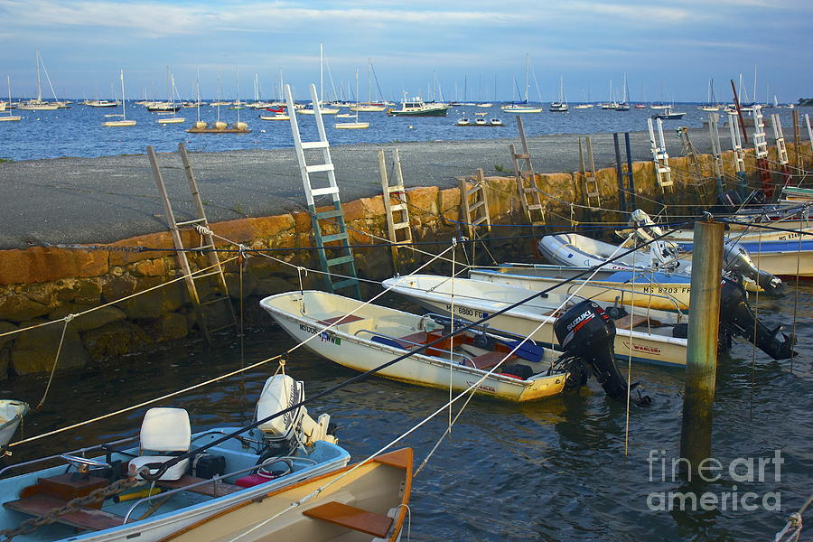 All Tied Up In Mattapoisett Photograph  - All Tied Up In Mattapoisett Fine Art Print