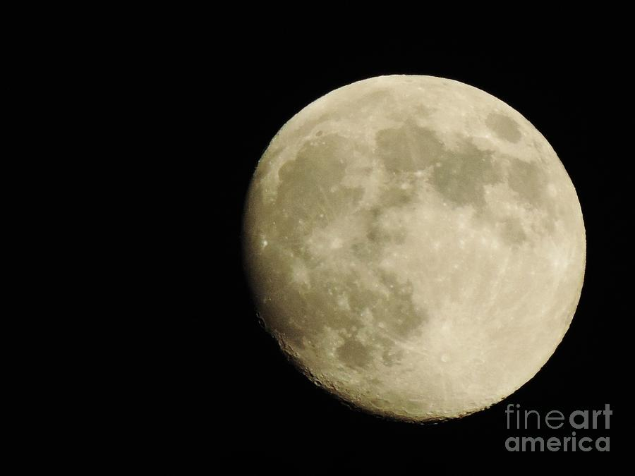 Full Moon Painting - Almost Full by Tom Riggs