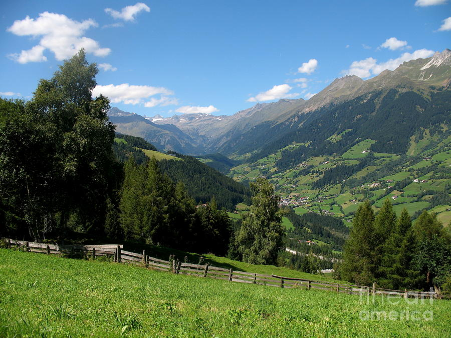 Alpin Meadow - South Tirol Photograph
