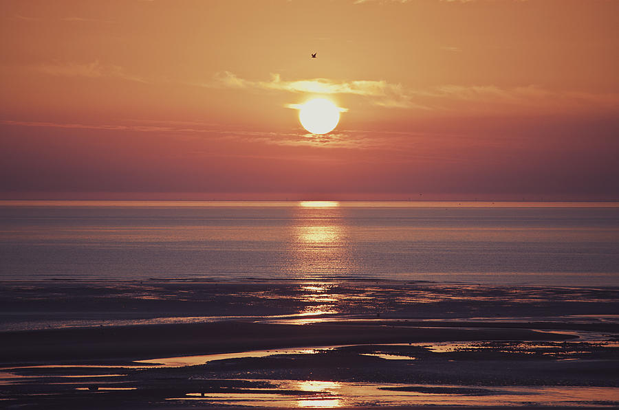 Beach Photograph - Already Gone by Nick Barkworth
