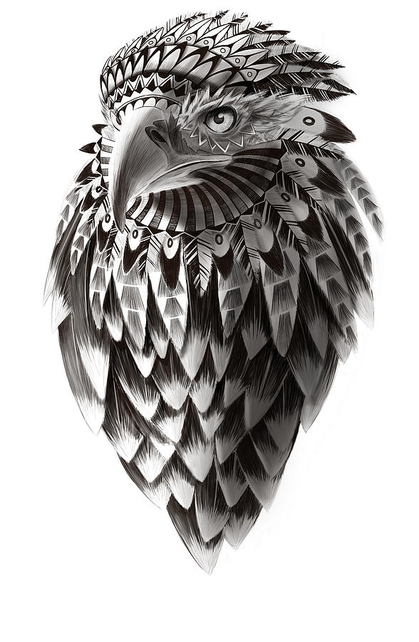 American Eagle Black And White Ornate Rendered Illustration Painting