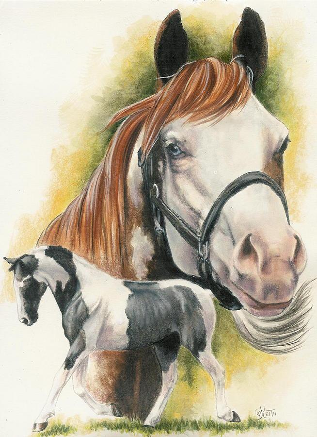 American paint by barbara keith - Fine art america ...