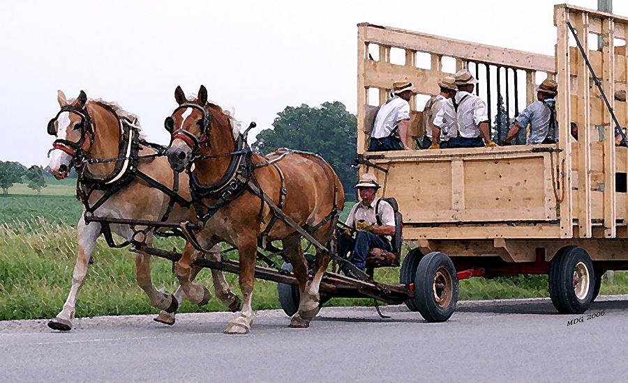 What language do the Amish speak