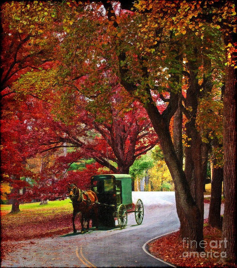 An Amish Autumn Ride Digital Art  - An Amish Autumn Ride Fine Art Print