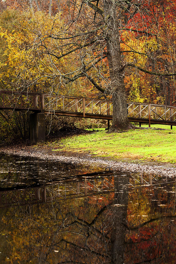 An Autumns Moment Photograph