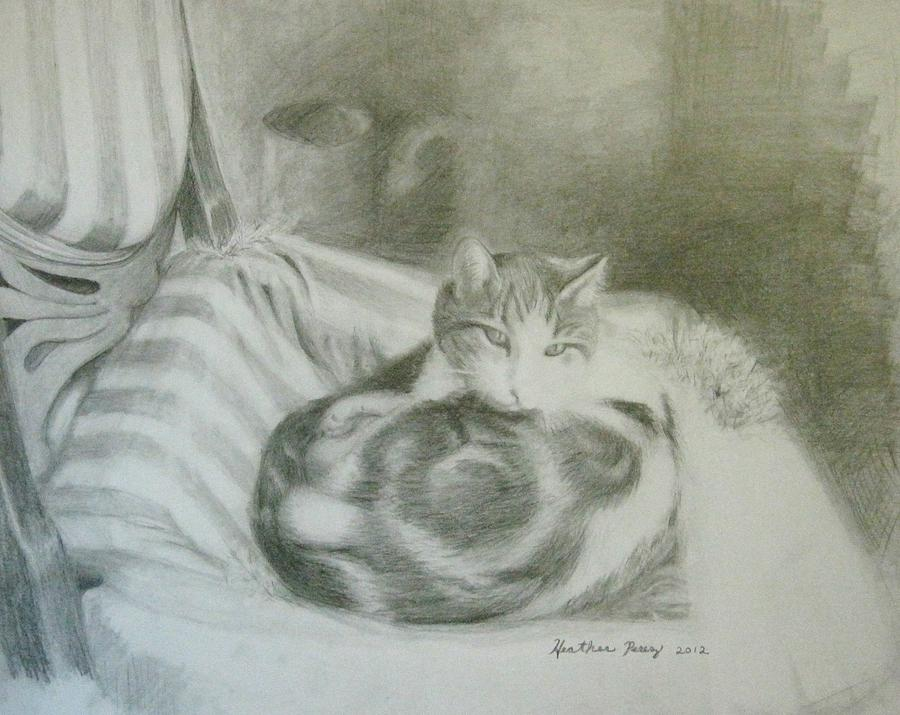 Animals Drawing - An Old Chair by Heather Perez