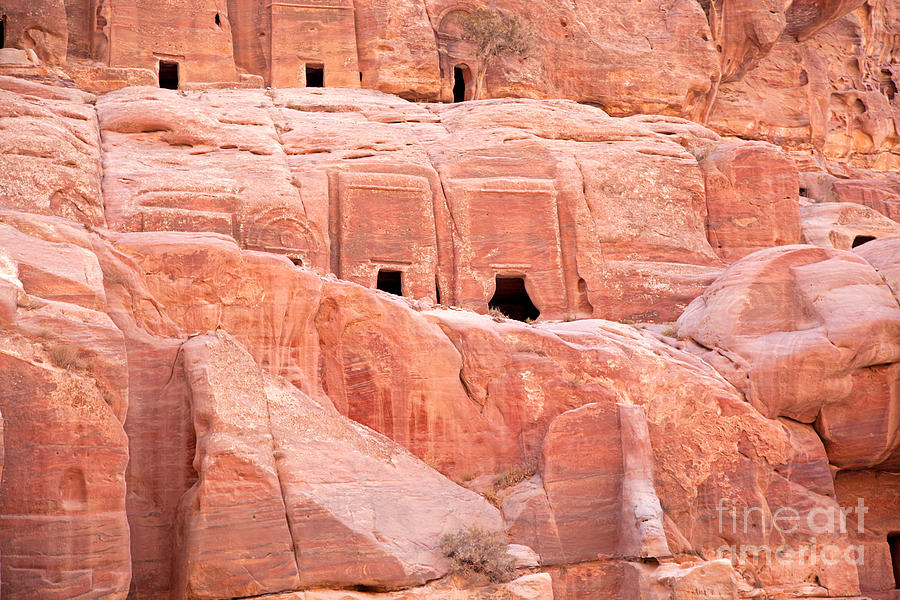 Ancient Buildings In Petra Photograph
