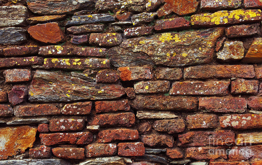 Ancient Wall Photograph  - Ancient Wall Fine Art Print