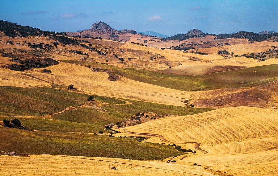 Andalusian Patchwork Fields I. Spain Photograph