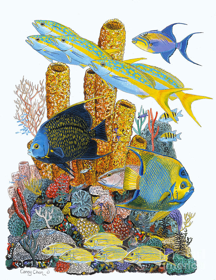 Angel Fish Reef Painting