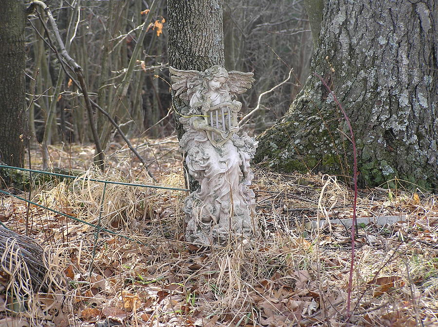 Angel Statue Photograph - Angel In The Woods by Marisa Horn