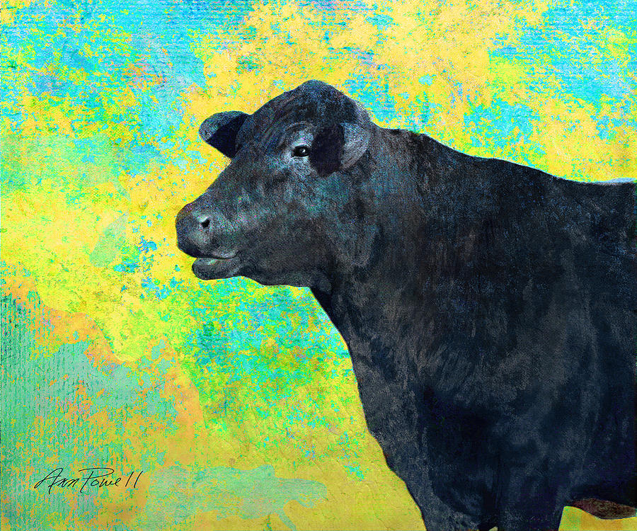 Animals Cow Black Angus  Digital Art  - Animals Cow Black Angus  Fine Art Print