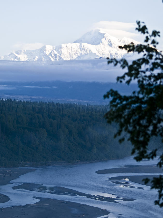 Another Denali View  Photograph