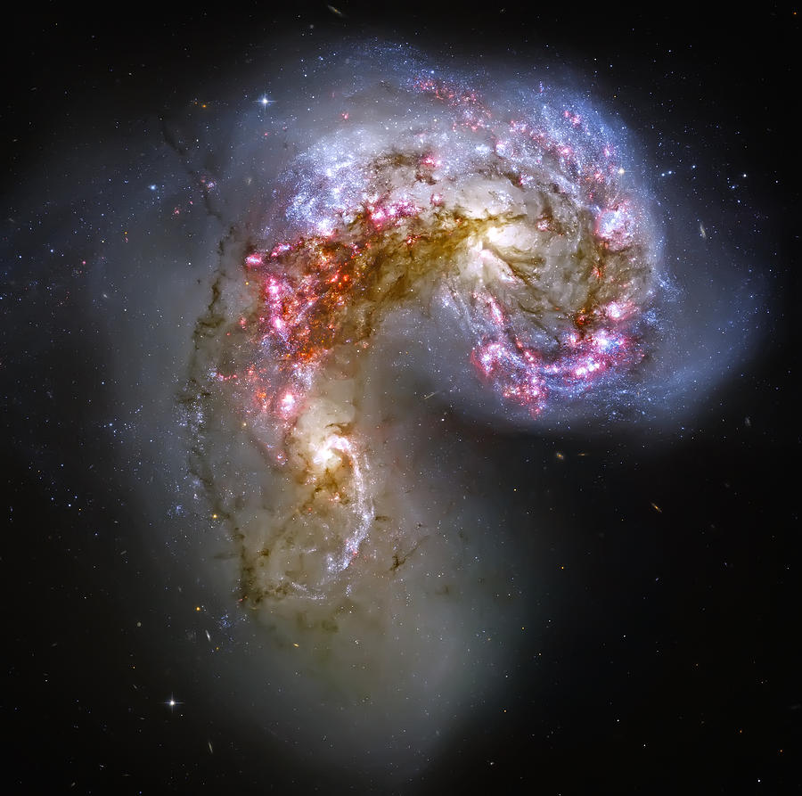 Universe Photograph - Antennae Galaxies Collide 1 by The  Vault - Jennifer Rondinelli Reilly
