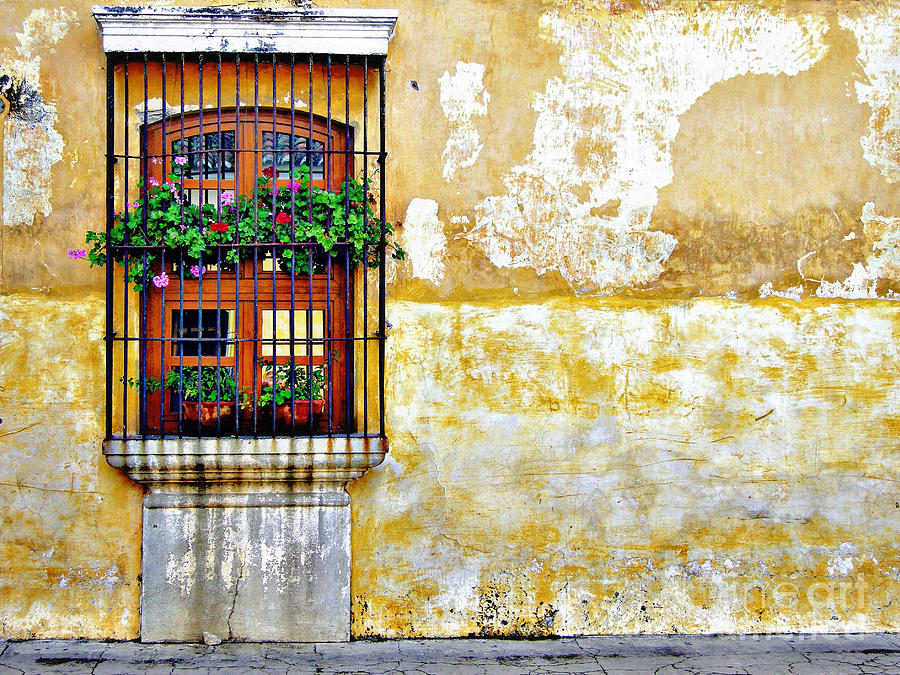 Antigua Window Photograph  - Antigua Window Fine Art Print