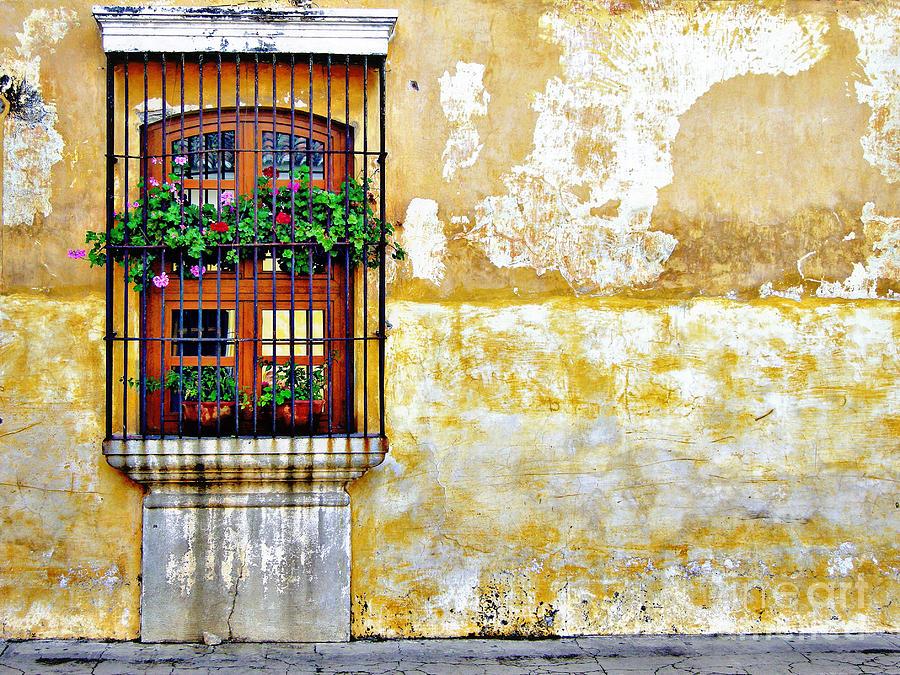 Antigua Window Photograph