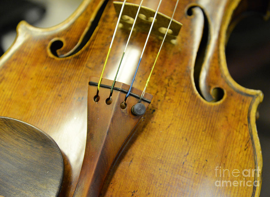 Antique Stradivarius From 1722 Photograph  - Antique Stradivarius From 1722 Fine Art Print