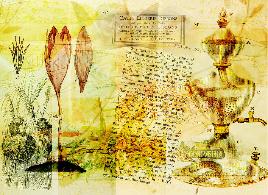 Anyone For Tea? Digital Art  - Anyone For Tea? Fine Art Print