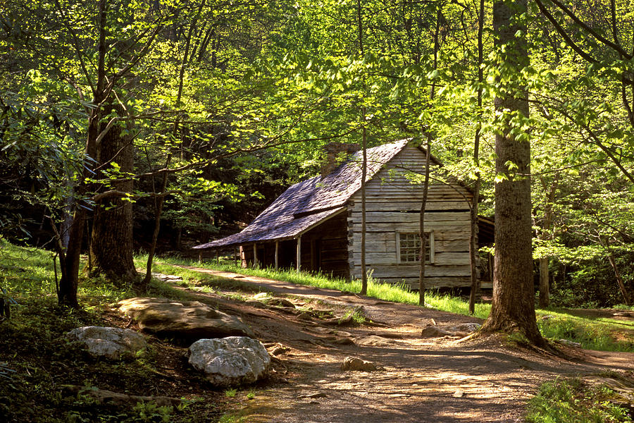 Appalachian Mountain Log Cabin Photograph