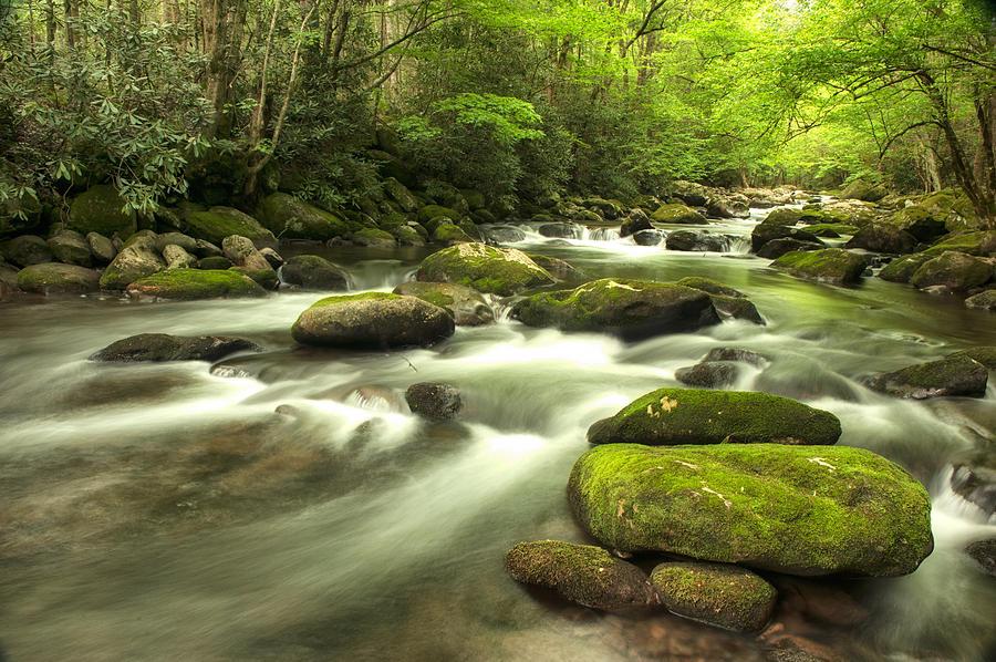 Stream Photograph - Appalachian Spring Stream by Phyllis Peterson