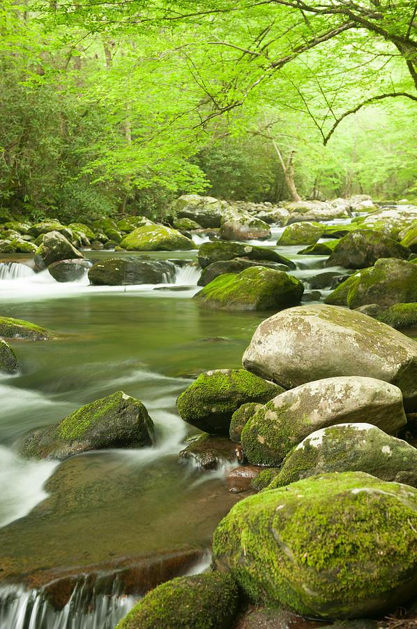 Appalachian Stream Photograph
