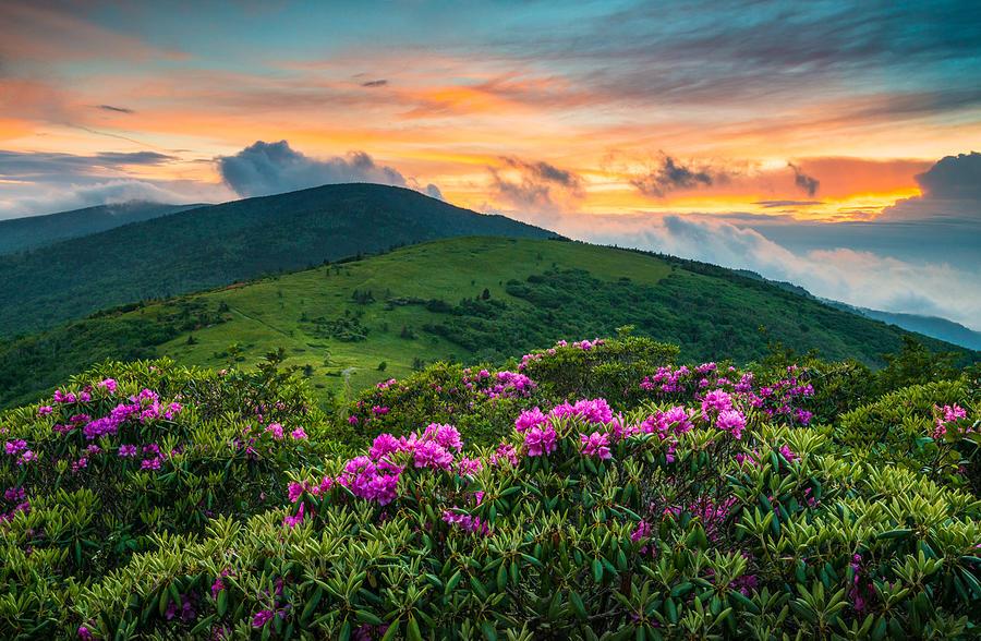 North Carolina Appalachian Trail Roan Mountain Highlands