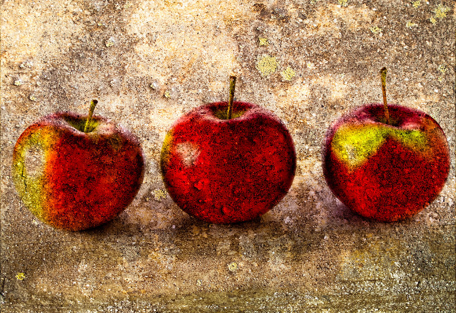 Apple Photograph - Apple by Bob Orsillo