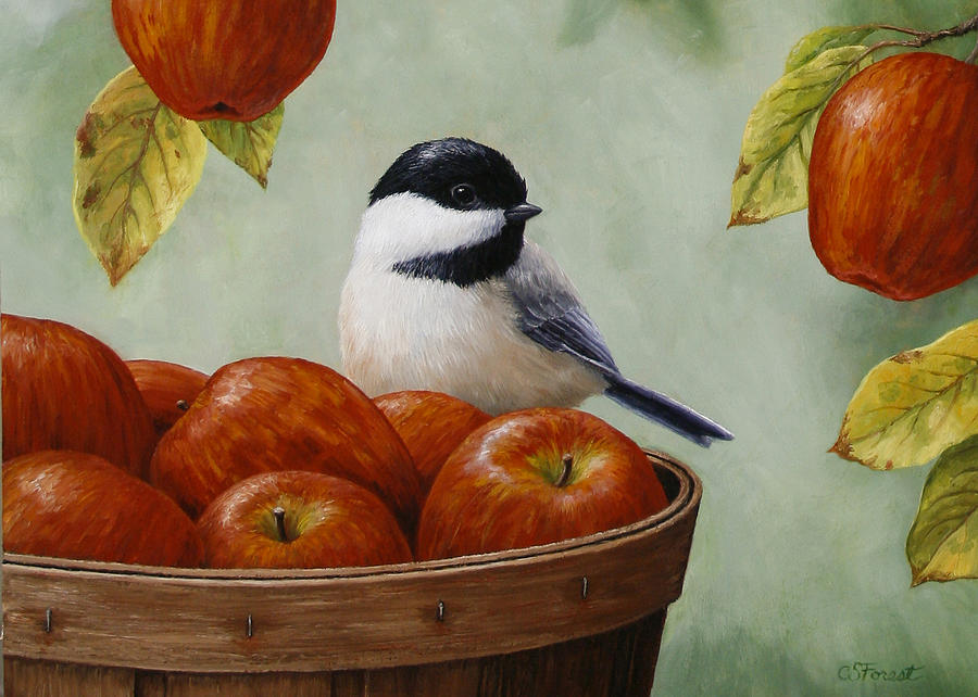 Bird Painting - Apple Chickadee Greeting Card 1 by Crista Forest
