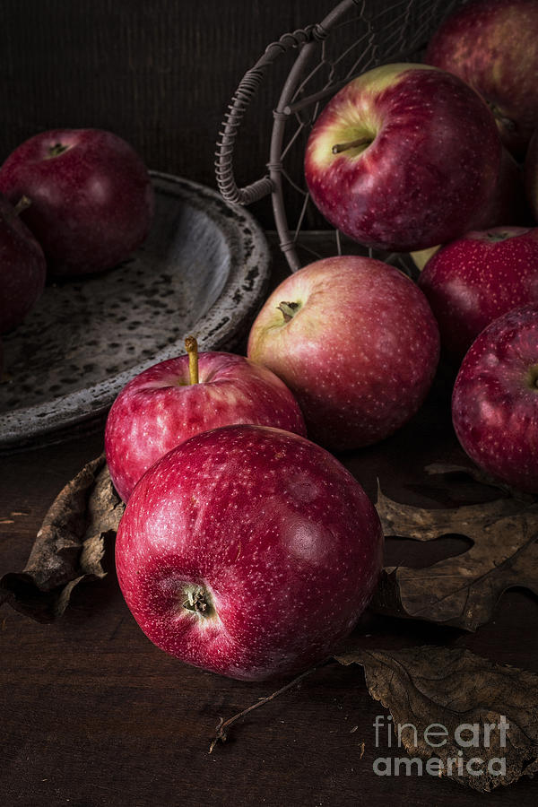 Apple Still Life Photograph  - Apple Still Life Fine Art Print