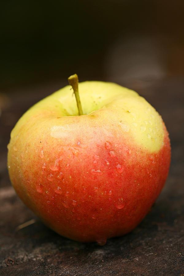 Displaying (15)... Apple Fine Art Photography