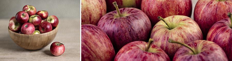 Panorama Photograph - Apples 01 by Nailia Schwarz