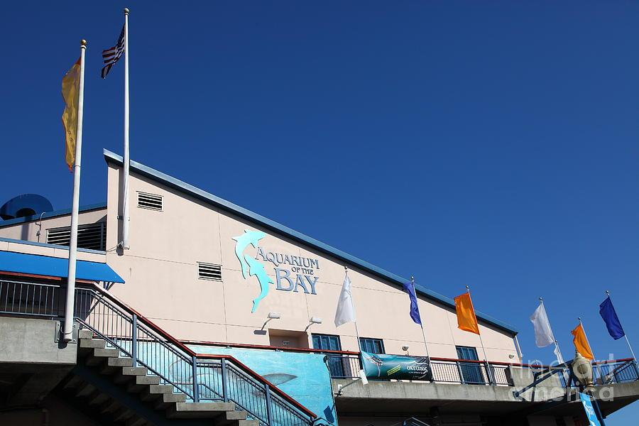 Aquarium Of The Bay At Pier 39 San Francisco California