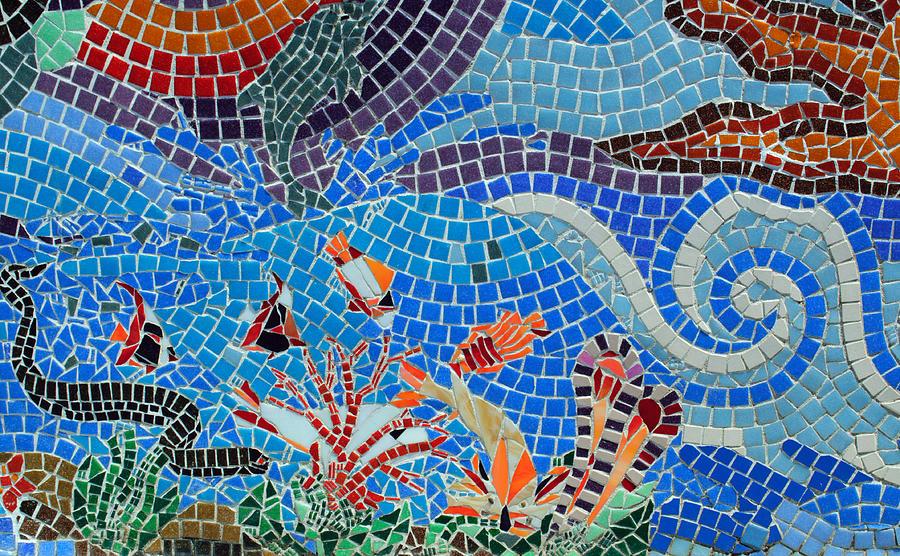 Aquatic Mosaic Tile Art Photograph By Tikvah S Hope