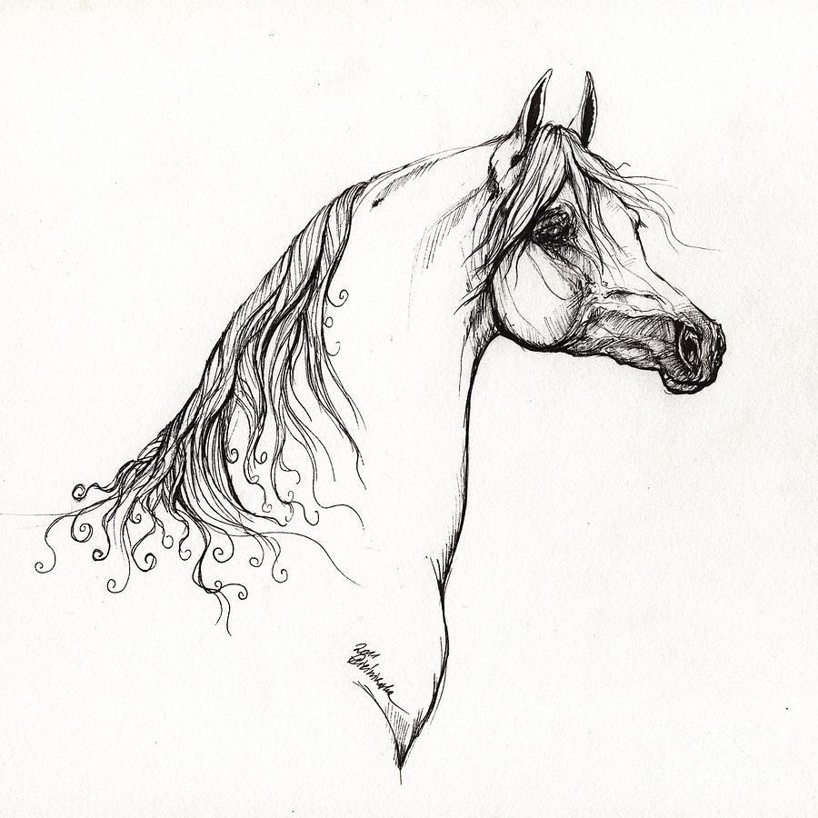 Arabian Horse Drawing 10 Drawing By Angel Tarantella