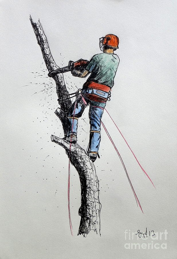 Arborist Tree Surgeon At Work Ideal Present Painting By