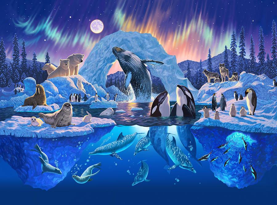 Arctic Harmony Photograph By Chris Heitt