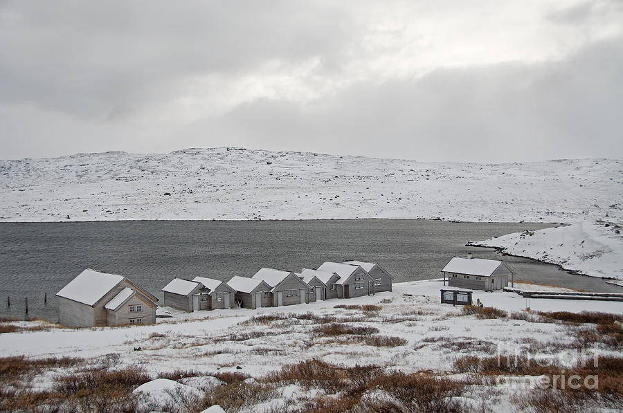 Arctic Winter Photograph