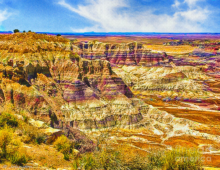 Arizona Petrified Forest National Park Photograph