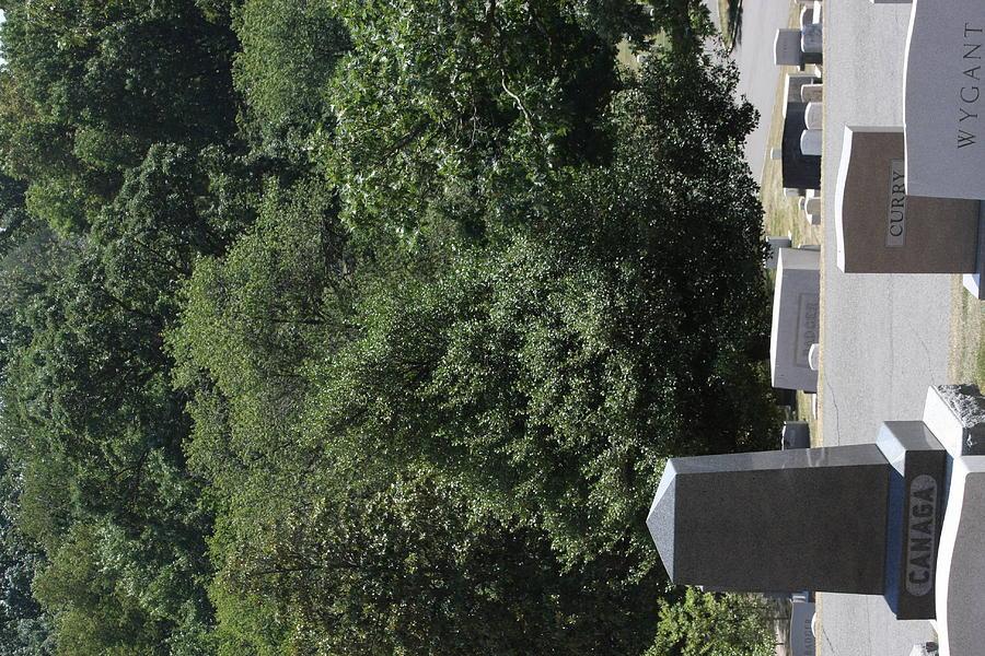 Arlington National Cemetery - 121231 Photograph