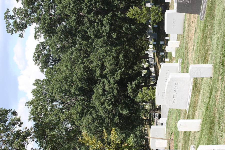 Arlington National Cemetery - 121237 Photograph