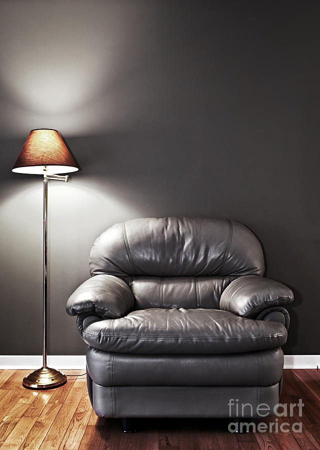 Armchair And Floor Lamp Photograph