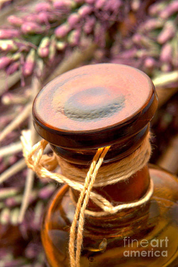 Aromatherapy Bottle Photograph  - Aromatherapy Bottle Fine Art Print
