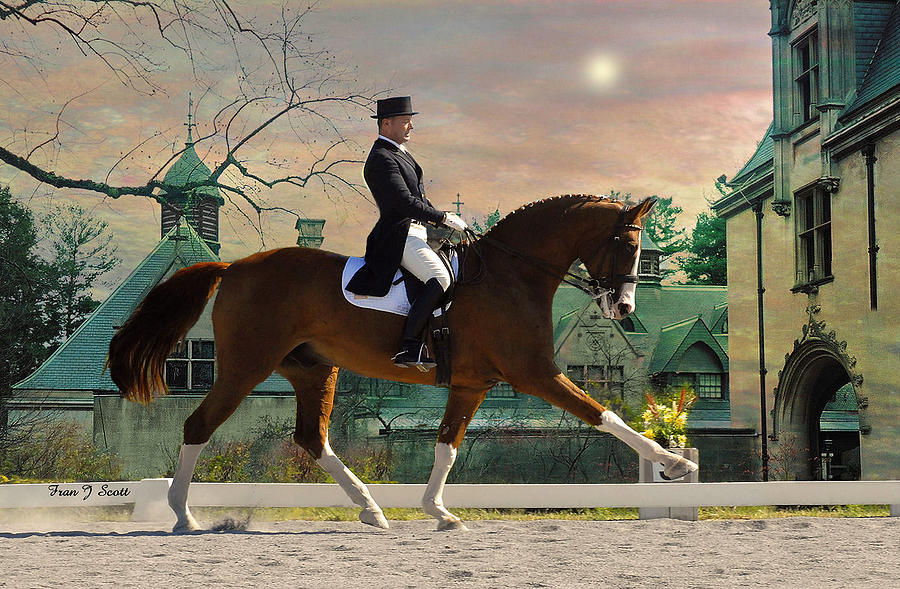 Art Of Dressage Photograph  - Art Of Dressage Fine Art Print