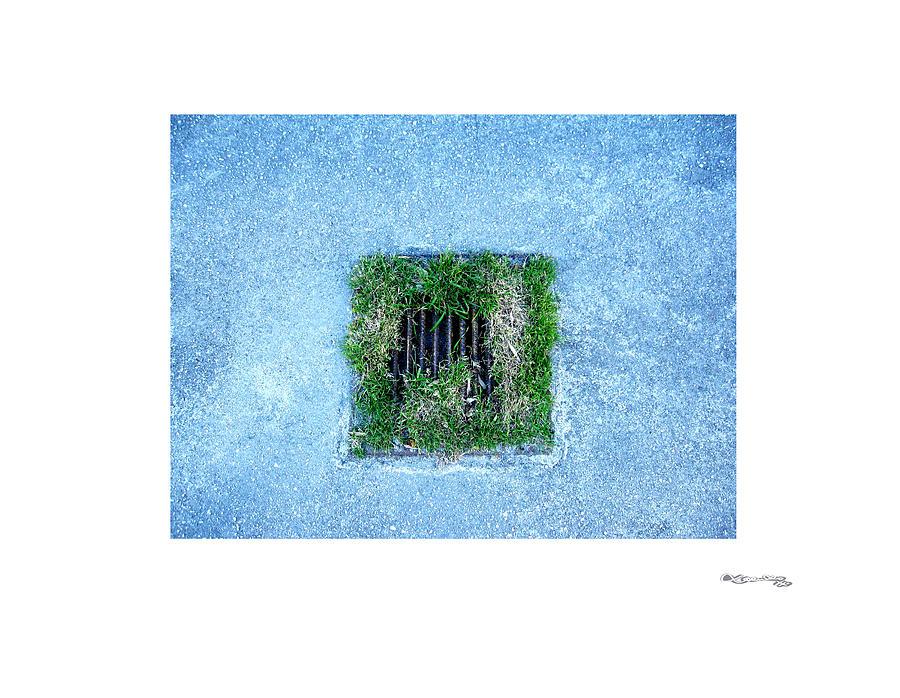 Arte Urban 16 Photograph