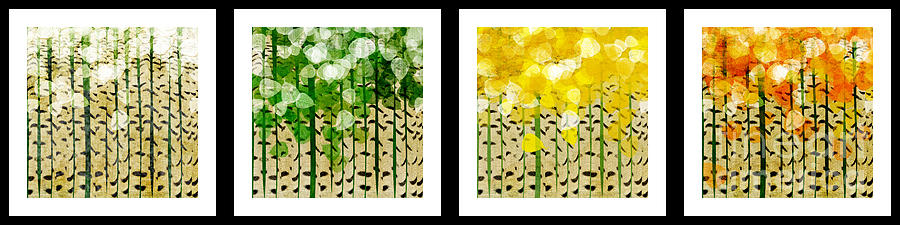 Aspen Colorado Abstract Horizontal 4 In 1 Collection Digital Art